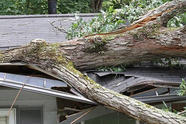 Storm Damage & Insurance Claims